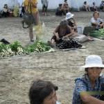 아파트가 도로에 줄지어 늘어앉아 채소를 판다. 협동농장이 아닌 개인이 재배한 것.