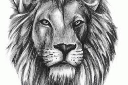 grey realistic lion head tattoo design