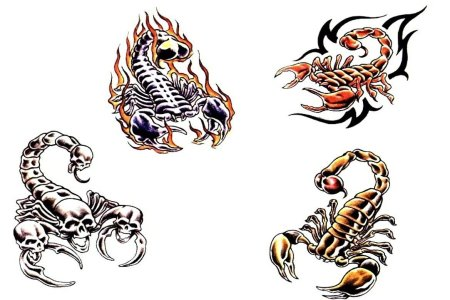 unique four scorpion tattoo design