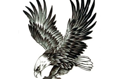 clic black ink flying eagle tattoo design