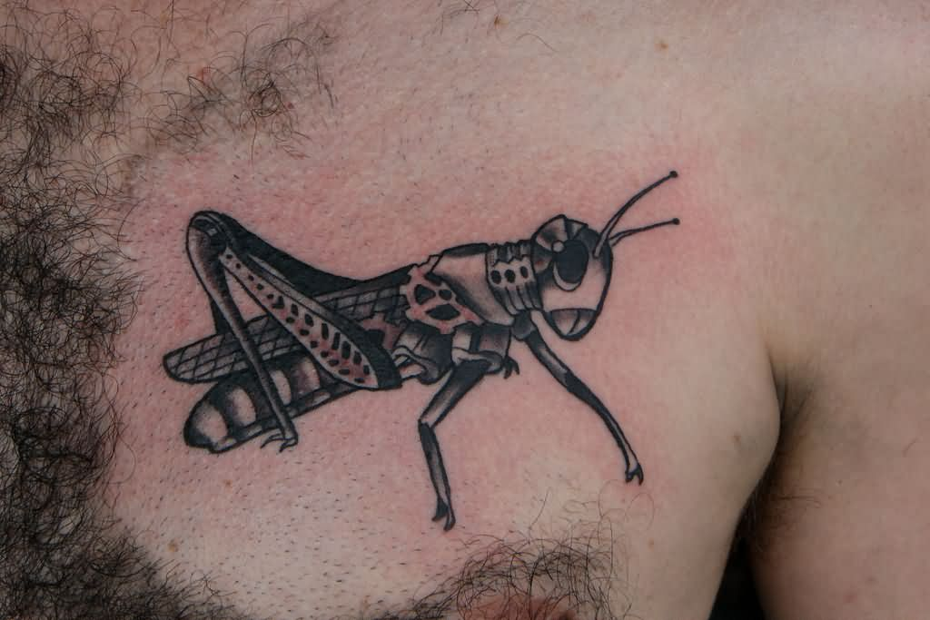 50+ Best Grasshopper Tattoos Design And Ideas of 18 by Bethany