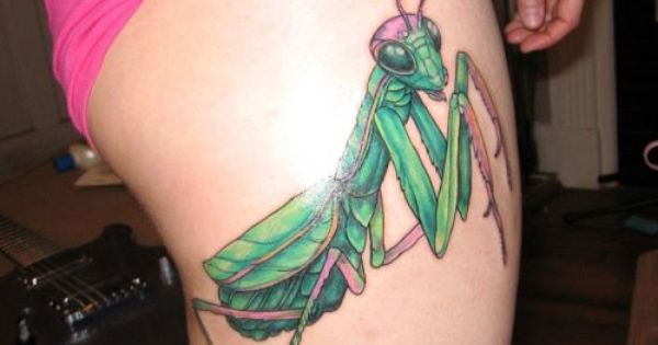 50+ Best Grasshopper Tattoos Design And Ideas of 35 by Bethany