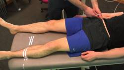 Clinical Examination of the Hip