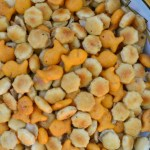 Crock Pot Zesty Snack Crackers