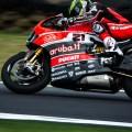 2015-World-Superbike-Phillip-Island-Anant-Deboor-05