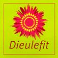 Logo-Dieulefit