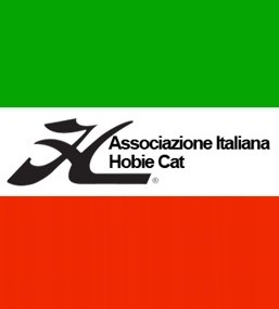 AIHC_logo_flag_orizz
