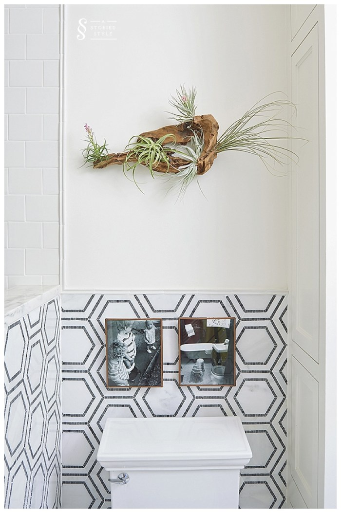bathroom makeover air plant art