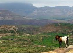 ethiopian_highlands__wikipedia
