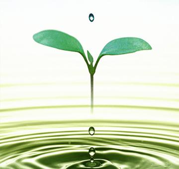 مياه وبيئة