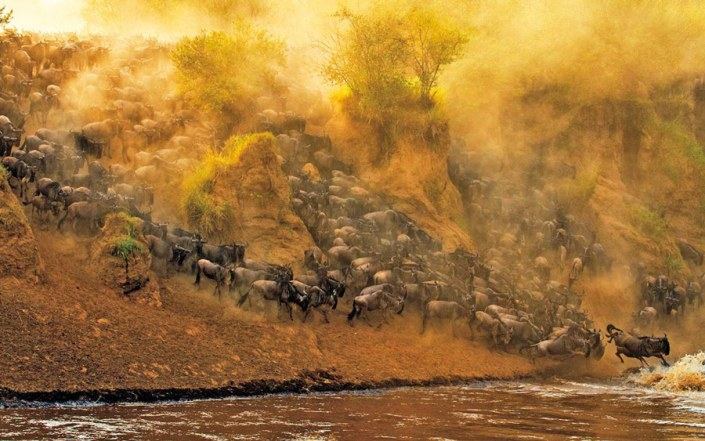 Kenya Luxury Safari - The Great Migration