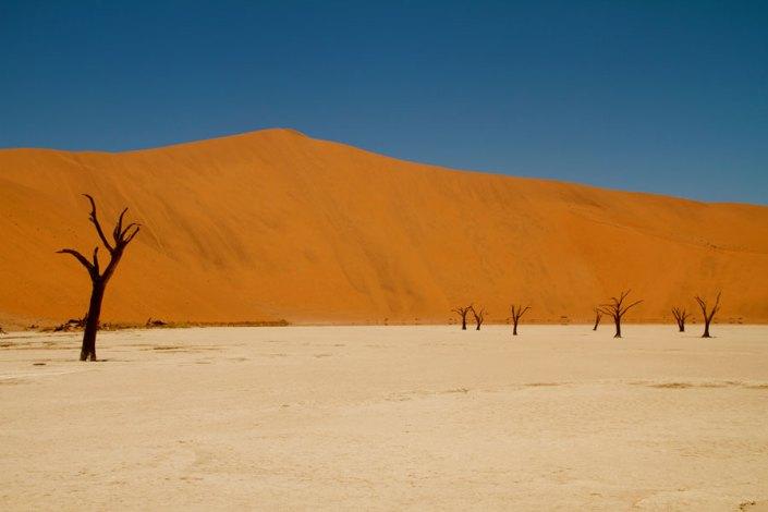 Dead Vlei a highlight on your Namibia Luxury Safari