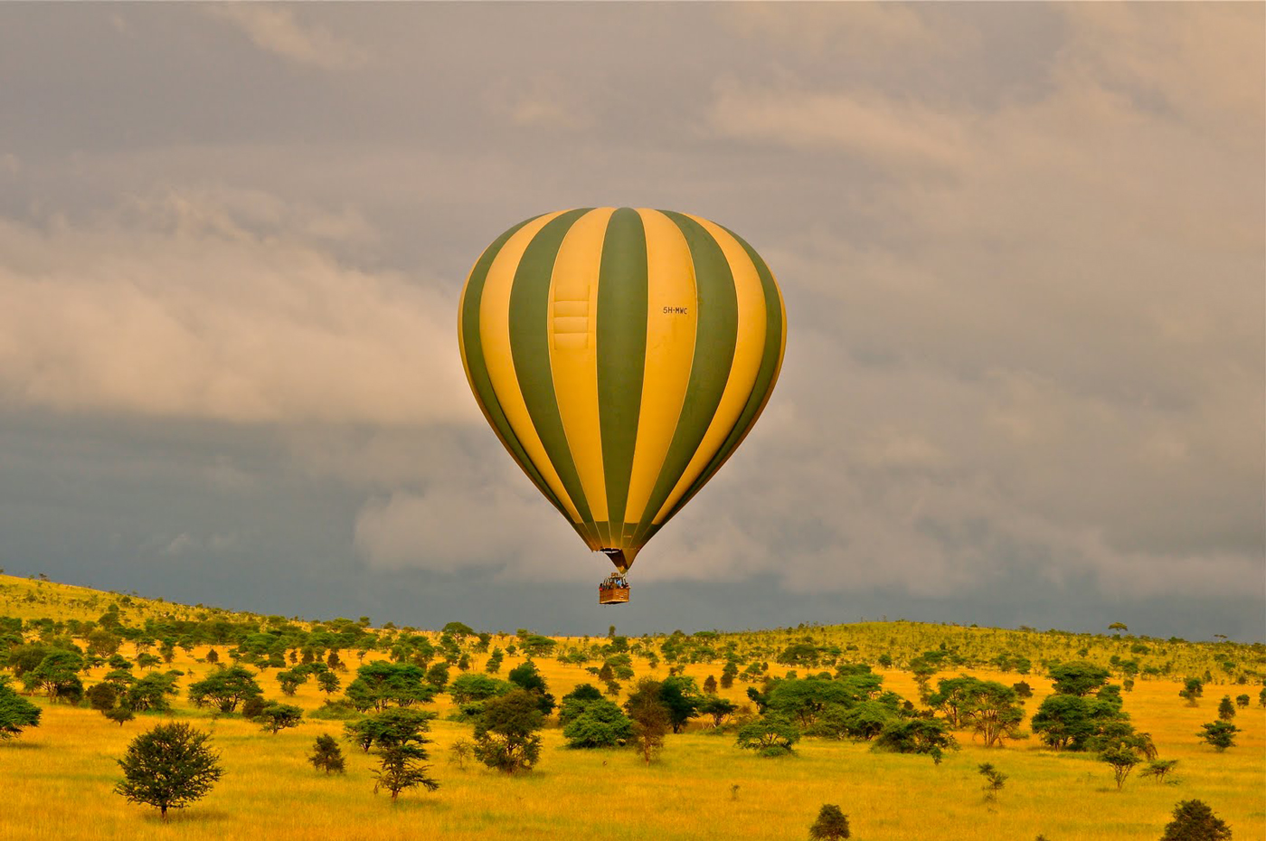 Discover the Sergengeti from a Hot Air Balloon