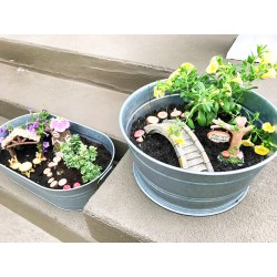 Small Crop Of Containers For Fairy Gardens