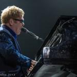 Elton 5 (1 of 1)