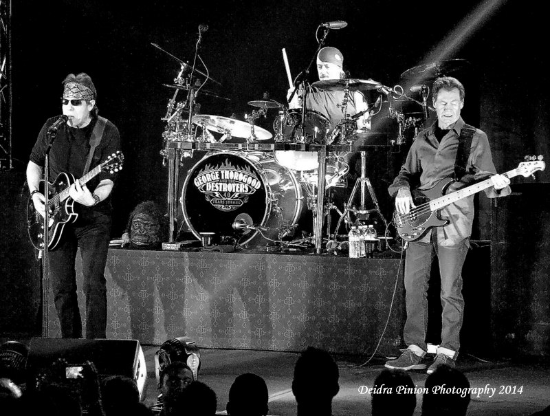 George Thorogood 795