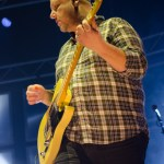 Pixies (12)