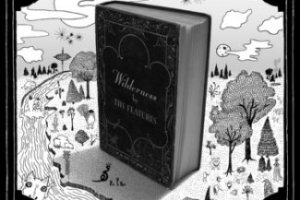 CD Review: The Features — The Wilderness; Playing The EARL, August 26