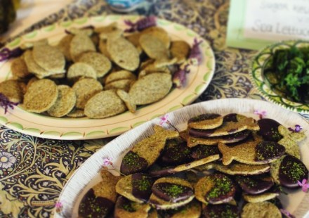 Sugar_kelp_shortbread_coated_in_dark_chocolate_and_sea_lettuce_sprinkles.__seaweedtreats_at_the_blue_flag_and_green_coast_awards_presented_by_minister_for_the_environment_Alan_Kelly.