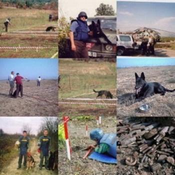 Landmine Detection