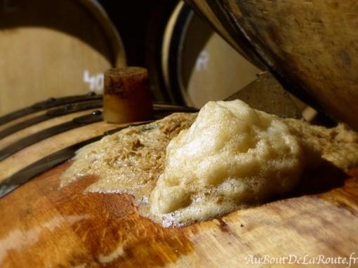 Mout en fermentation