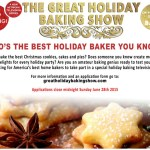 The Great Holiday Baking Show Casting Nationwide