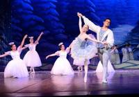 The Nutcracker Alamo performing arts
