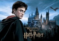 Harry Potter web series