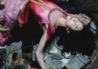 Sleeping Beauty Detroit Ballet