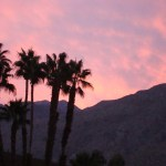 Home Renovation Series Casting Couples in Palm Springs for Open House Video
