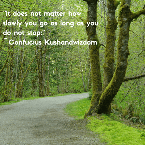 """it does not matter how slowly you go as long as you do not stop."" -Confucius Kushandwizdom"