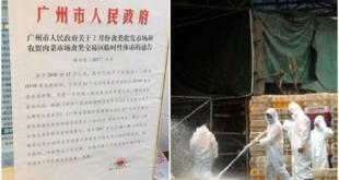 廣州市11個轄區均有禽類市場被檢出H7N9禽流感病毒核酸。(網路圖片)