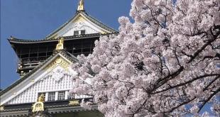 圖為華麗的大阪城