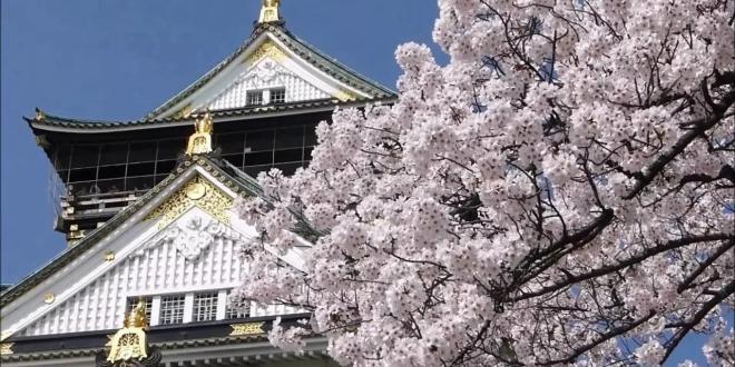 图为华丽的大阪城