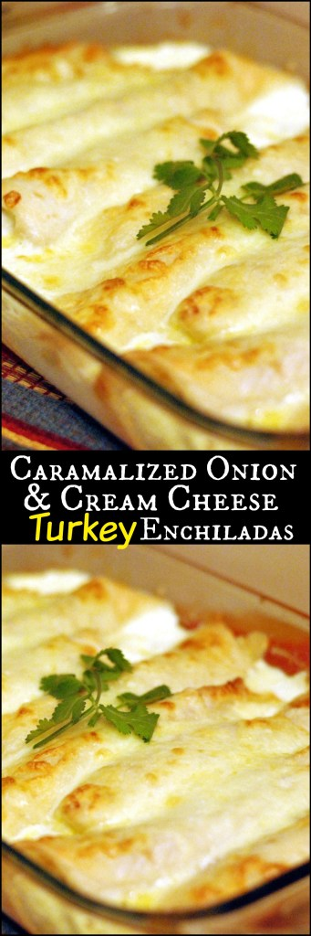 Caramelized Onion & Cream Cheese Turkey Enchiladas | Aunt Bee's Recipes