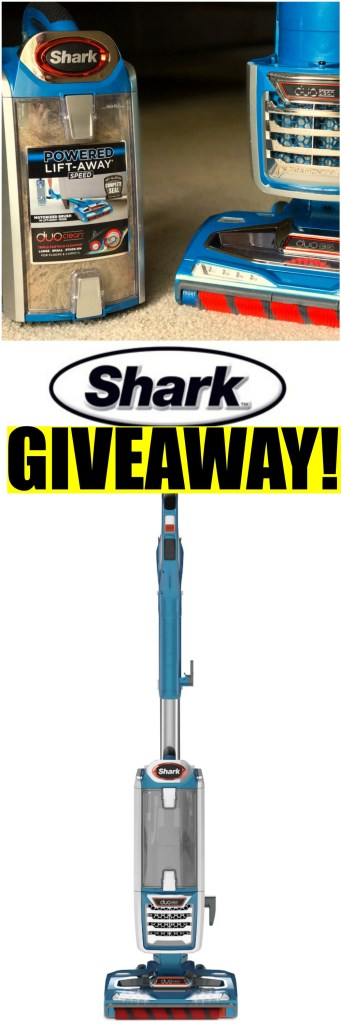 Shark Giveaway!