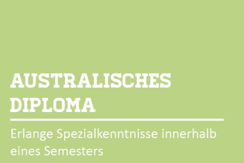 Progr.Diploma