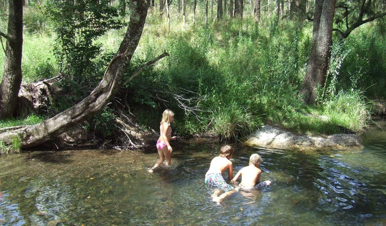 Washpool is a popular family destination in northern NSW. Photo courtesy of National Parks NSW