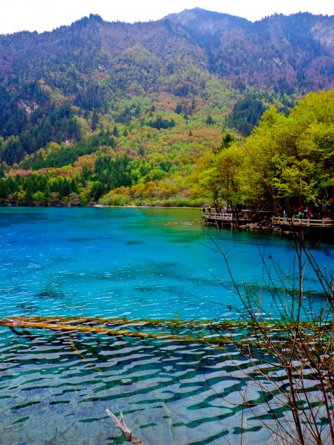 Five Flower Lake in Jiuzhaigou.
