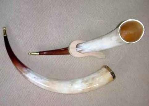 Polished Highland Horns