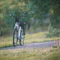 Pourquoi et comment choisir un vélo électrique pour faire de la randonnée ?