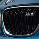 2016 BMW M2 Grille