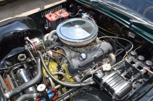 '65's 289