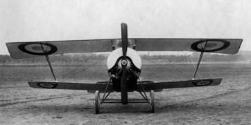 Gn11-2