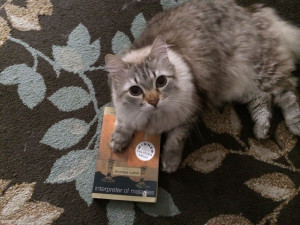 Rowdy curling up with Interpreter of Maladies.