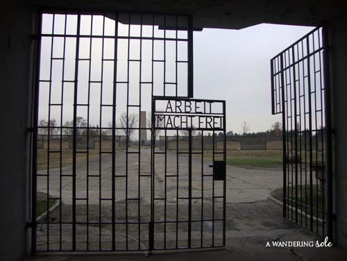 "thesis statement on death camps Auschwitz was regarded as the most effective concentration camp established by  the nazi regime in pursuit of the ""final solution"" unknown numbers of people."