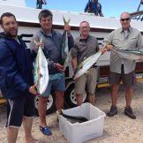 fish-caught-at-struisbaai