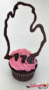 Rockin Cupcakes - MIchigan Birthday Bake Off