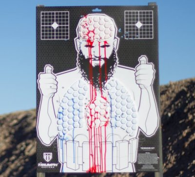 Zombie Target (Triumph Systems, Facebook)