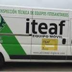 iteaf